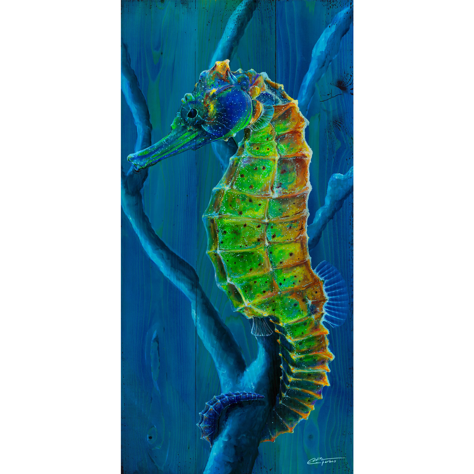 seahorse eddie forbes arteddie forbes art