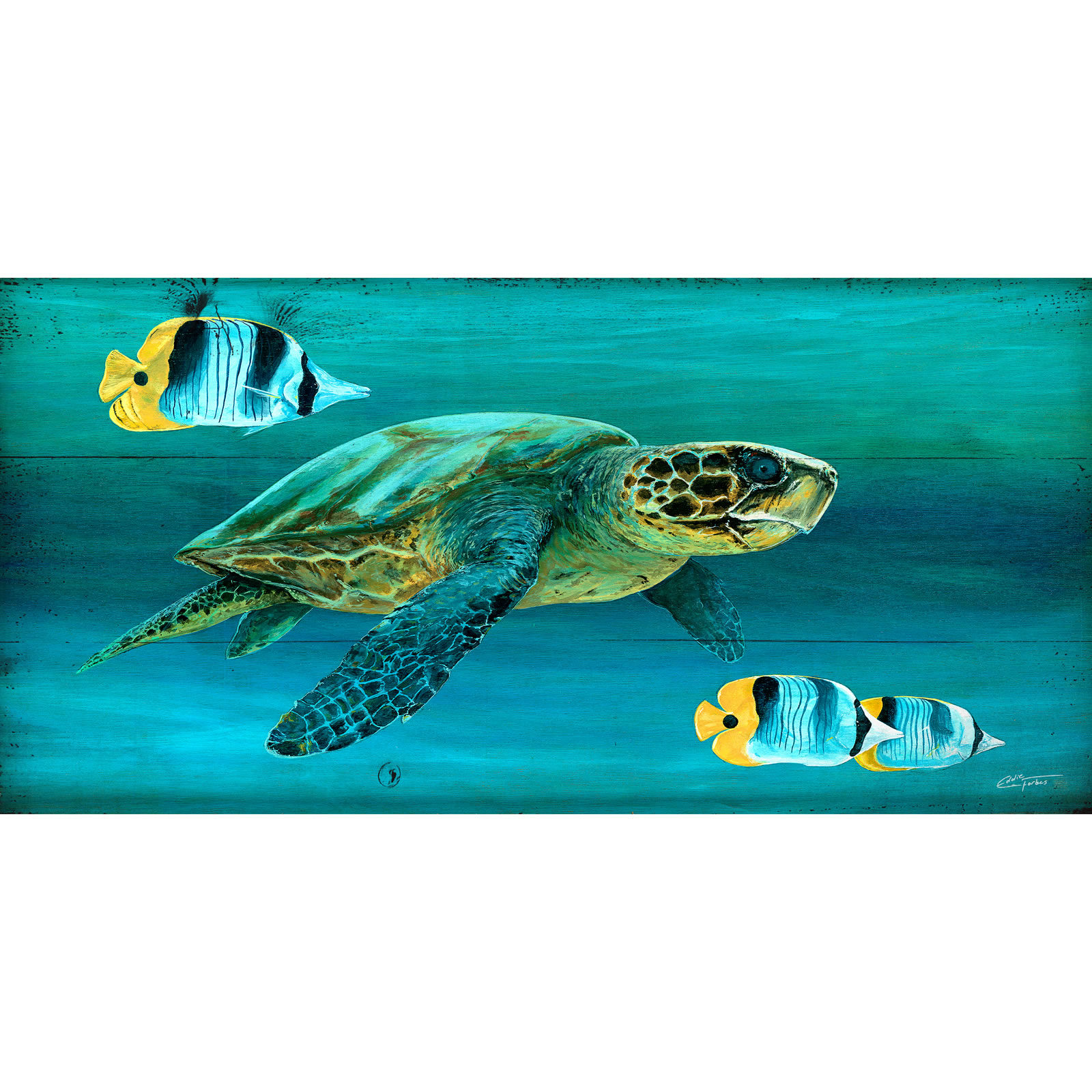Turtle Escort