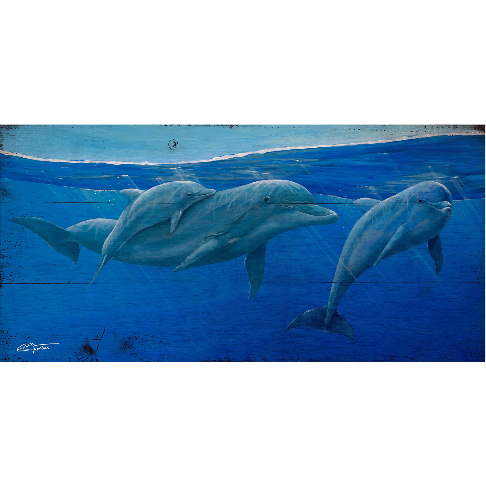 Dolphin Fam original